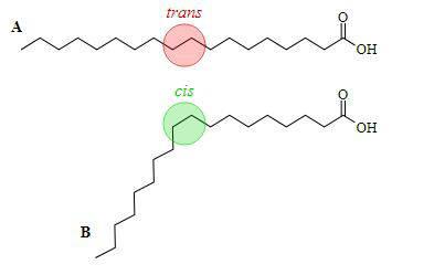 cis-trans-343x249